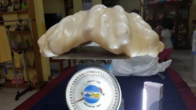 Perla gigante de 34 kilos expuesta en Puerto Princesa