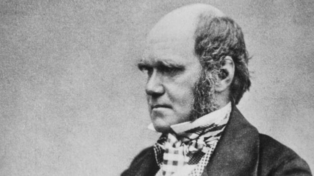 Charles Darwin fits the perception of bald men as intelligent, high-status and influential