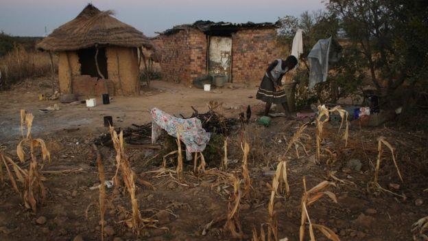 zimbabwean woman at farmstead