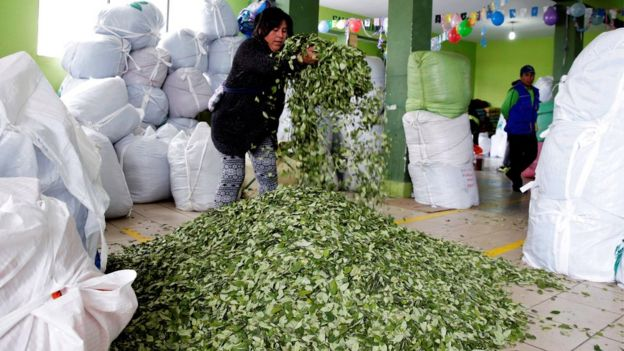 Sacos de coca en Bolivia