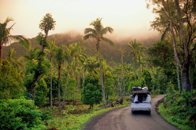 Jungle-covered highlands region of patsi island of anjouan, comoros islands