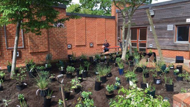 Joh Bates courtyard