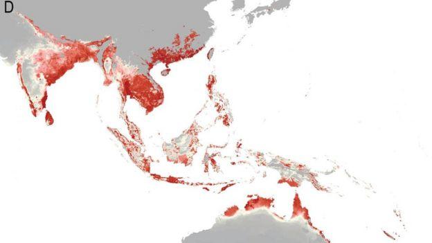 Asia risk