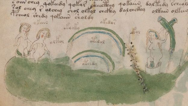¿Opiniones? - Manuscrito Voynich - Página 2 _90881863_1006223_quarter