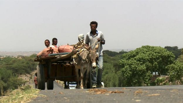Group of men with donkey in Ethiopia