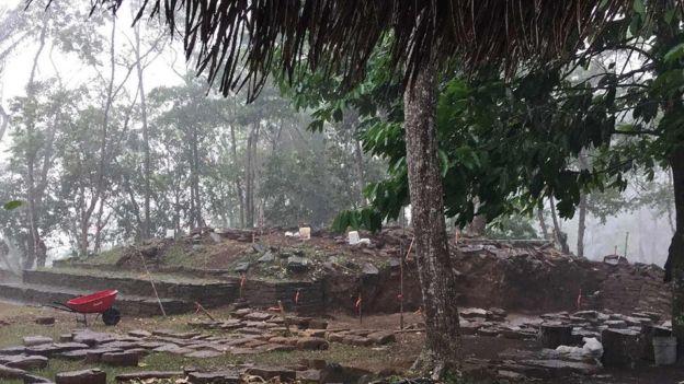 Ruínas de construções em pedra cercadas por árvores no sítio arqueológico de Nim Li Punit