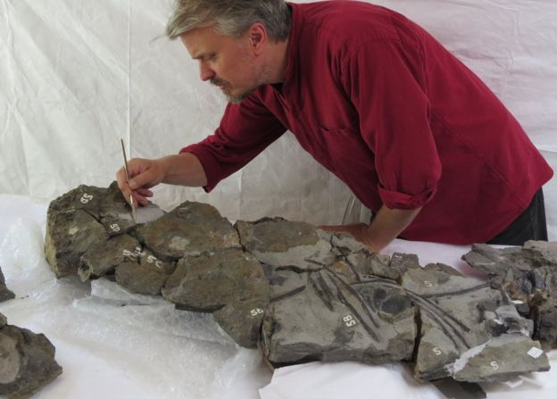 Palaeontologist Nigel Larkin and the fossil