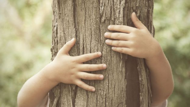 Manos de un niño abrazando un árbol