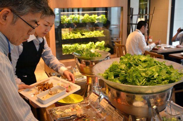 People choosing hydroponically grown vegetables in Japanese restaurant