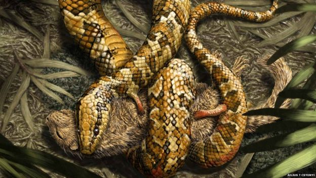 illustration of four-legged snake