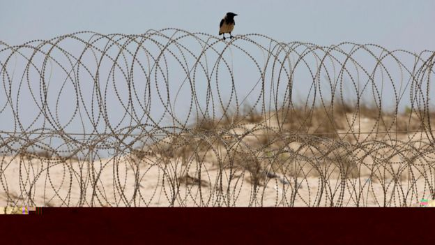 A crow sits on a barbed wire fence on the Mediterranean sea beach front near Kibbutz Zikim, on the Israel-Gaza border (July 2015)