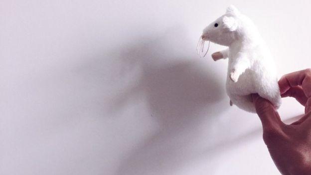 Ratón de juguete