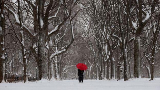 Hombre caminando con un paraguas en un parque