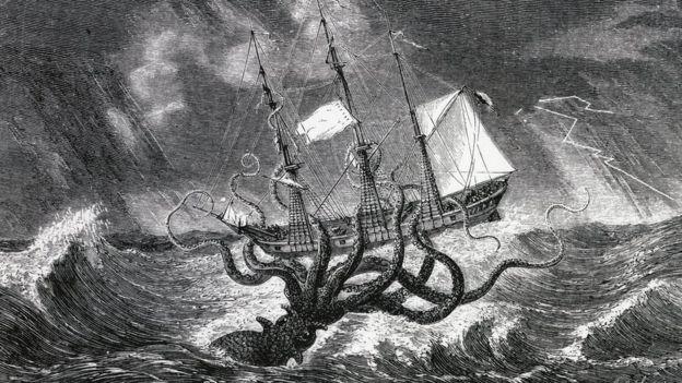 Giant squid are rare in the Mediterranean
