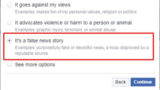 Facebook screen for reporting false news story