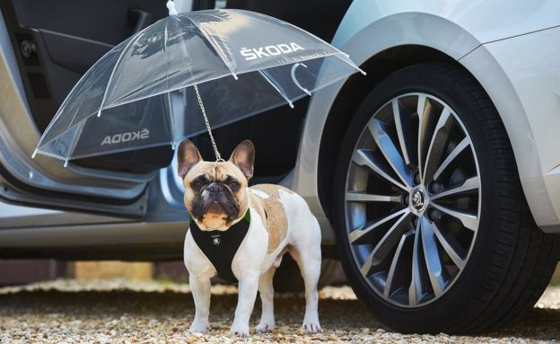 ŠKODA unveils new Simply Clever canine umbrella