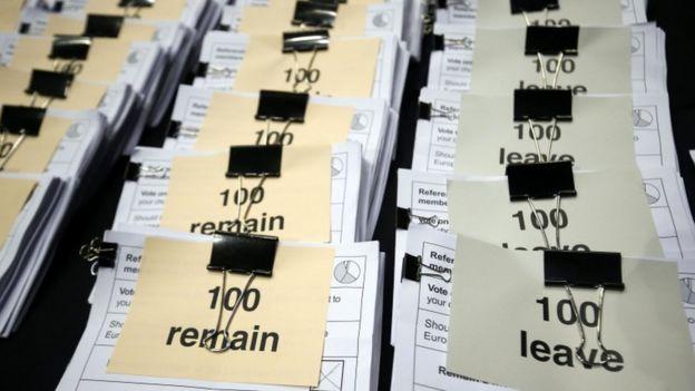 Referendum count