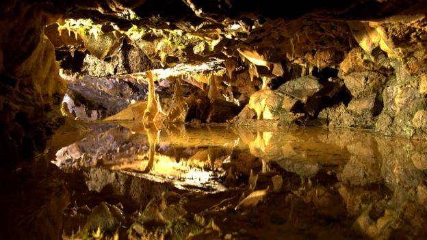 Причина смерти людей из пещеры Гофа неизвестна