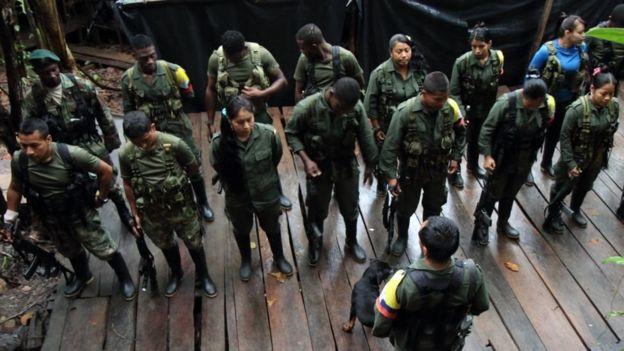 La mayoría de los guerrilleros podrían ser amnistiados | BBC Mundo