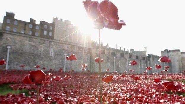 A picture of the poppies at the Tower of London
