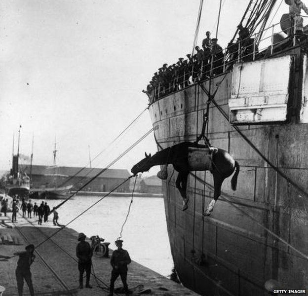 1915: British troops landing horses from a ship at Salonika to move to the Balkan battle front.