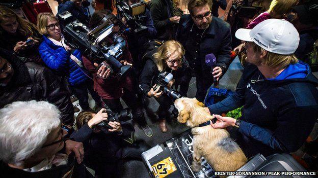 Arthur the dog returning to Sweden