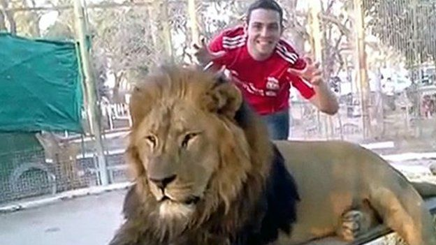 A visitor posing with a lion