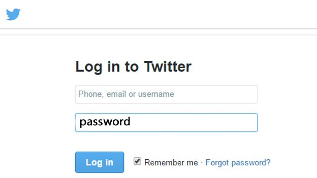The word password used as login password