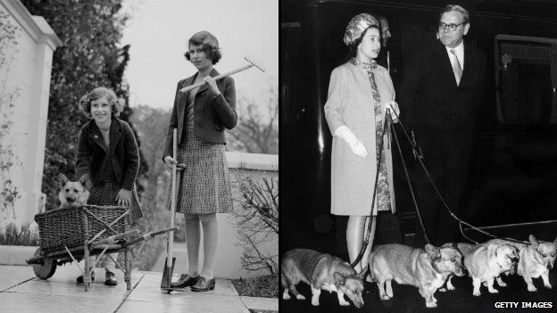 Black and White photos of Princess Margaret and Princess Elizabeth playing with a corgi in a basket and Queen Elizabeth II on an official tour with her corgis