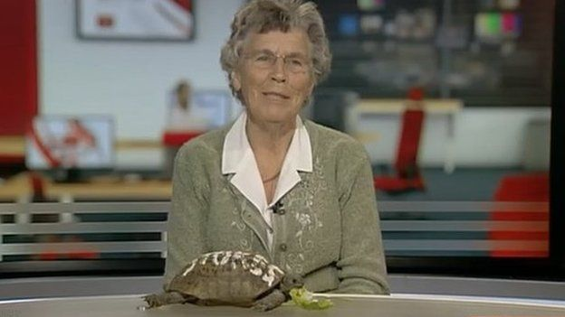 Wendy Stokes with Toby the tortoise