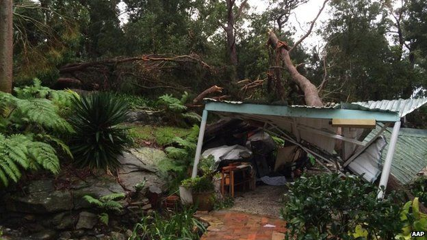 A tree fell on top of a garage after strong winds and heavy rain in Sydney, Tuesday, April 21, 2015.