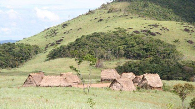 Yanomami huts Venezuela