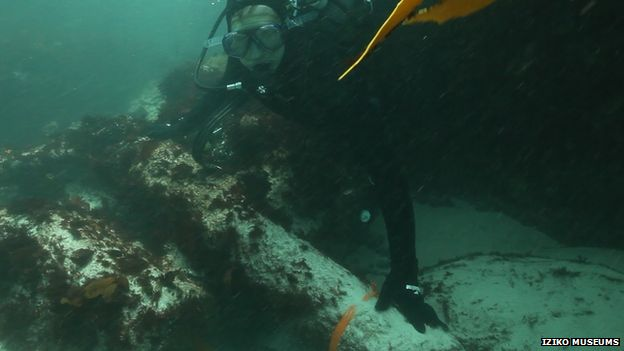 Diver at site