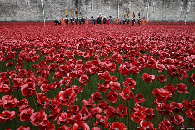 Tower of London Poppies Field Field of Poppies at The Tower