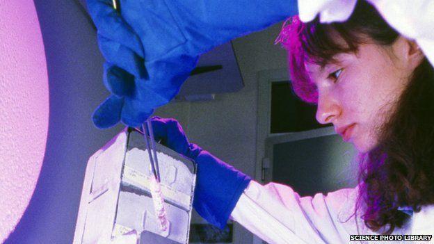 Researcher removes tissue from liquid nitrogen