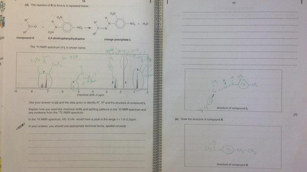 ocr biology practical coursework