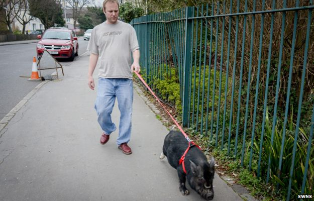 Frances Bacon being taken for a walk with Ian Taylor-Ross
