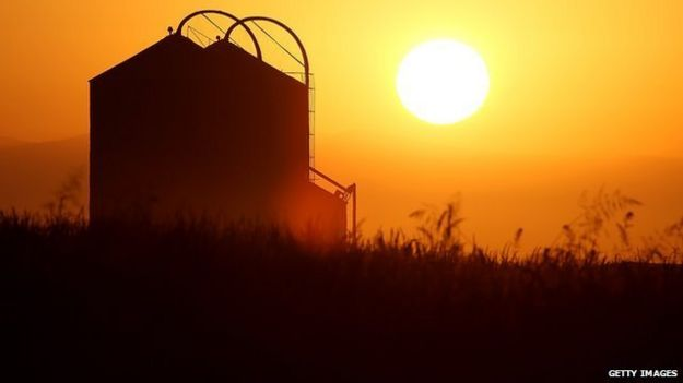 The sun rises over a farm on August 22, 2014 near Firebaugh, California.
