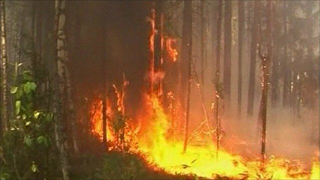 Russian forest fire