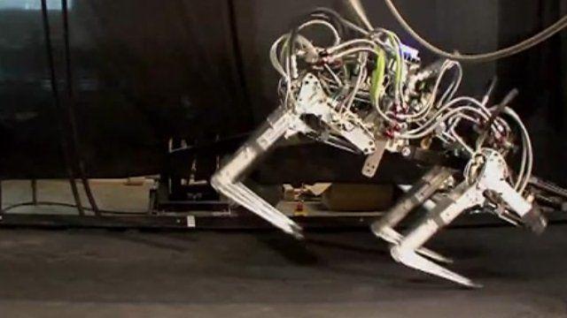 The 'Cheetah' robot
