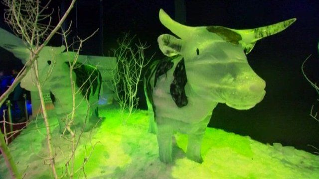 Ice sculpture of a cow