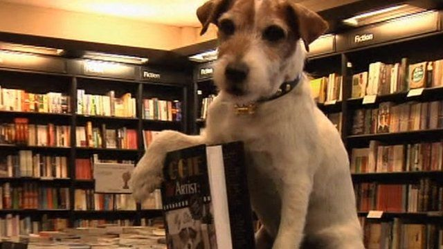Uggie with his book