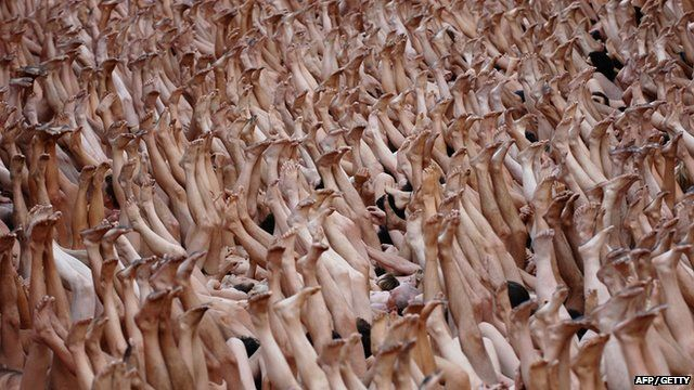 One of Spencer Tunick's pictures