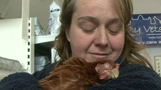 Hen and owner