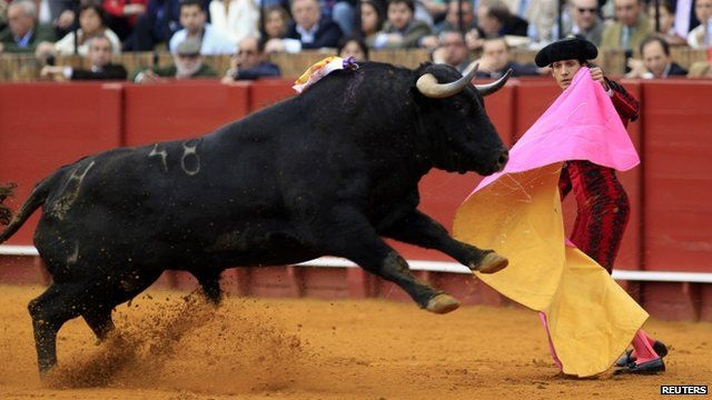 A bullfight at The Maestranza bullring in southern Spain