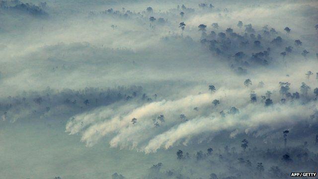 Fire in Indonesia