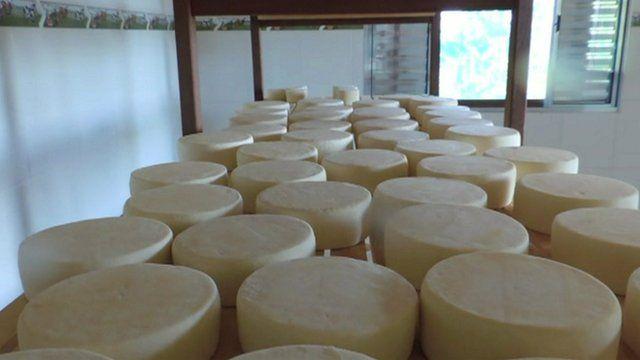 Brazilian cheeses on a shelf
