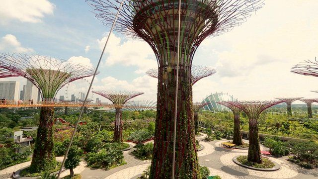 'Trees' in Gardens by the Bay