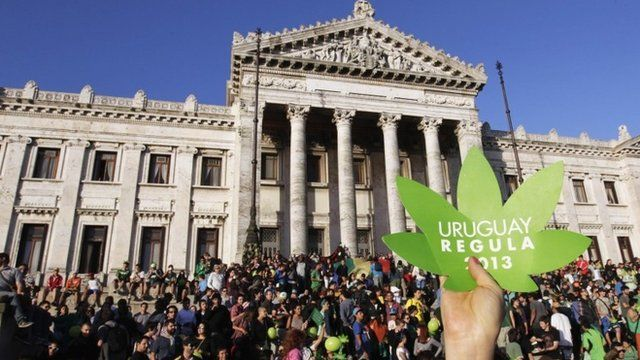"People participate in the so-called ""Last demonstration with illegal marijuana"" in front of the Congress building in Montevideo"