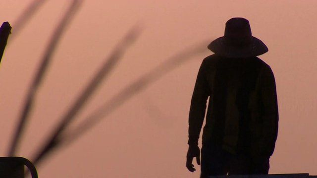 Worker stands in sunset